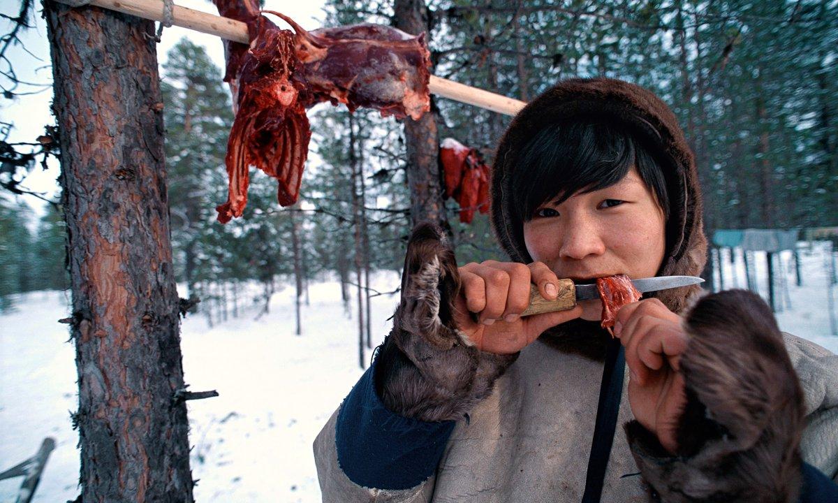 Все о необычном быте эскимосов: почему люди Севера едят руками и не моют за собой посуду